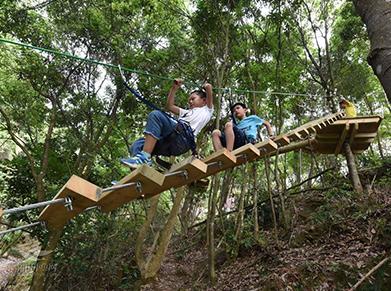丛林探险走梯